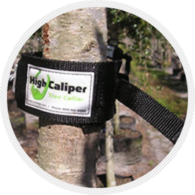 High Caliper tree collar