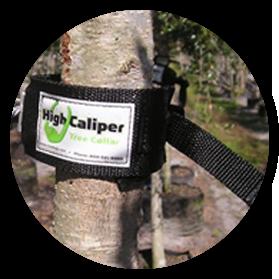High Caliper tree collar
