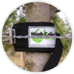 Easy to put on and take off tree collars