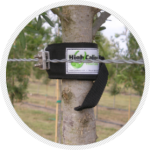 Tree Collar protects against scarring