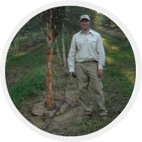 Manager of Lassiter Tree Farm