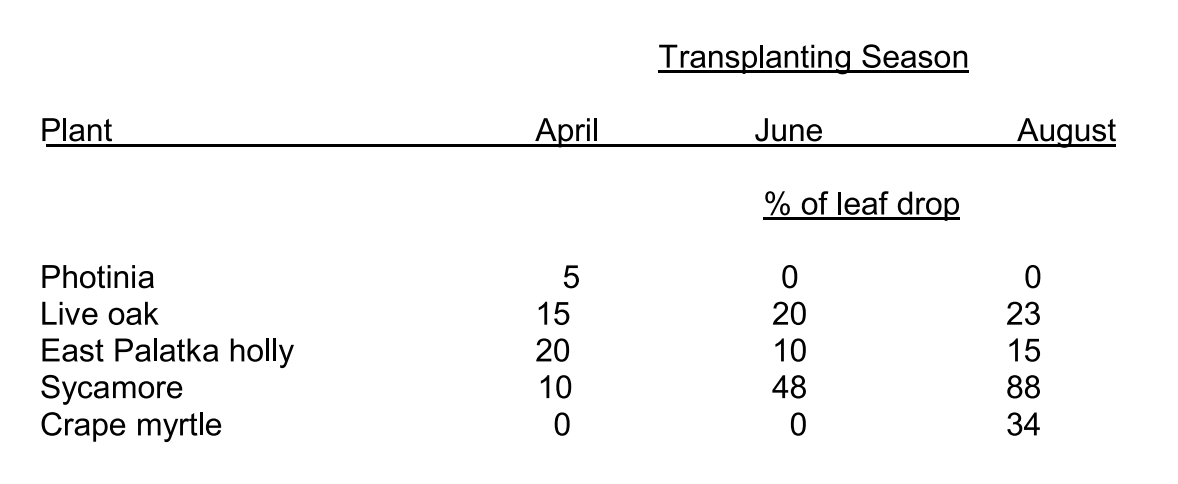 Percent leaf-drop 4 weeks after transplanting from Field-Grow containers as influenced by transplanting season.